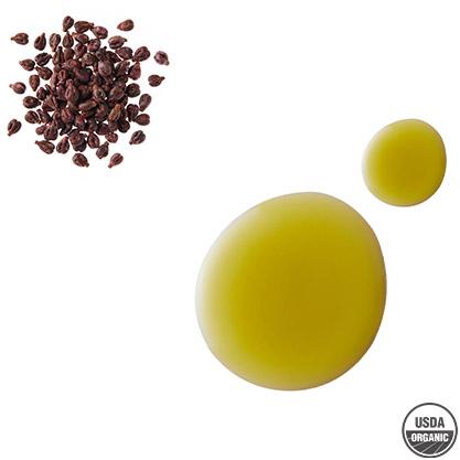 organic grape seed oil